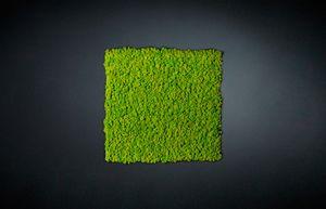 Lichene, Modulares Panel für grüne Wand