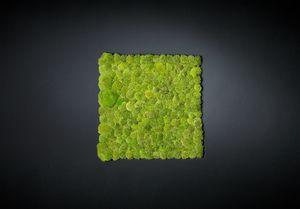 Polemoss, Dekorative grüne Wand