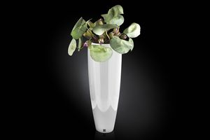 Tokio Komposition, Dekorative Vase